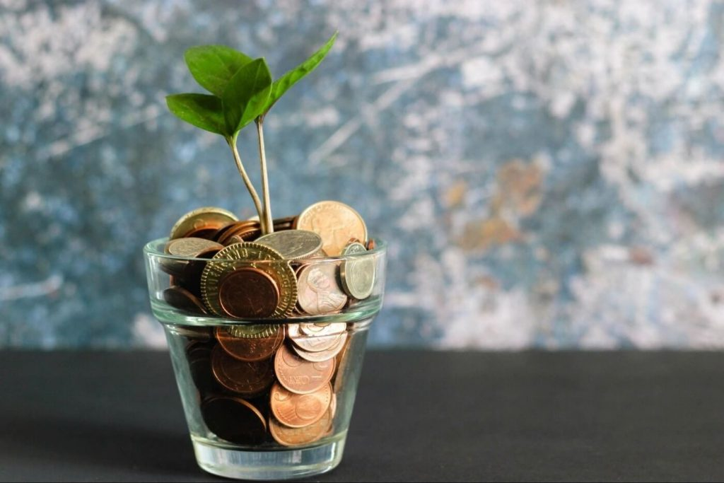 a plant in a clear glass with coins